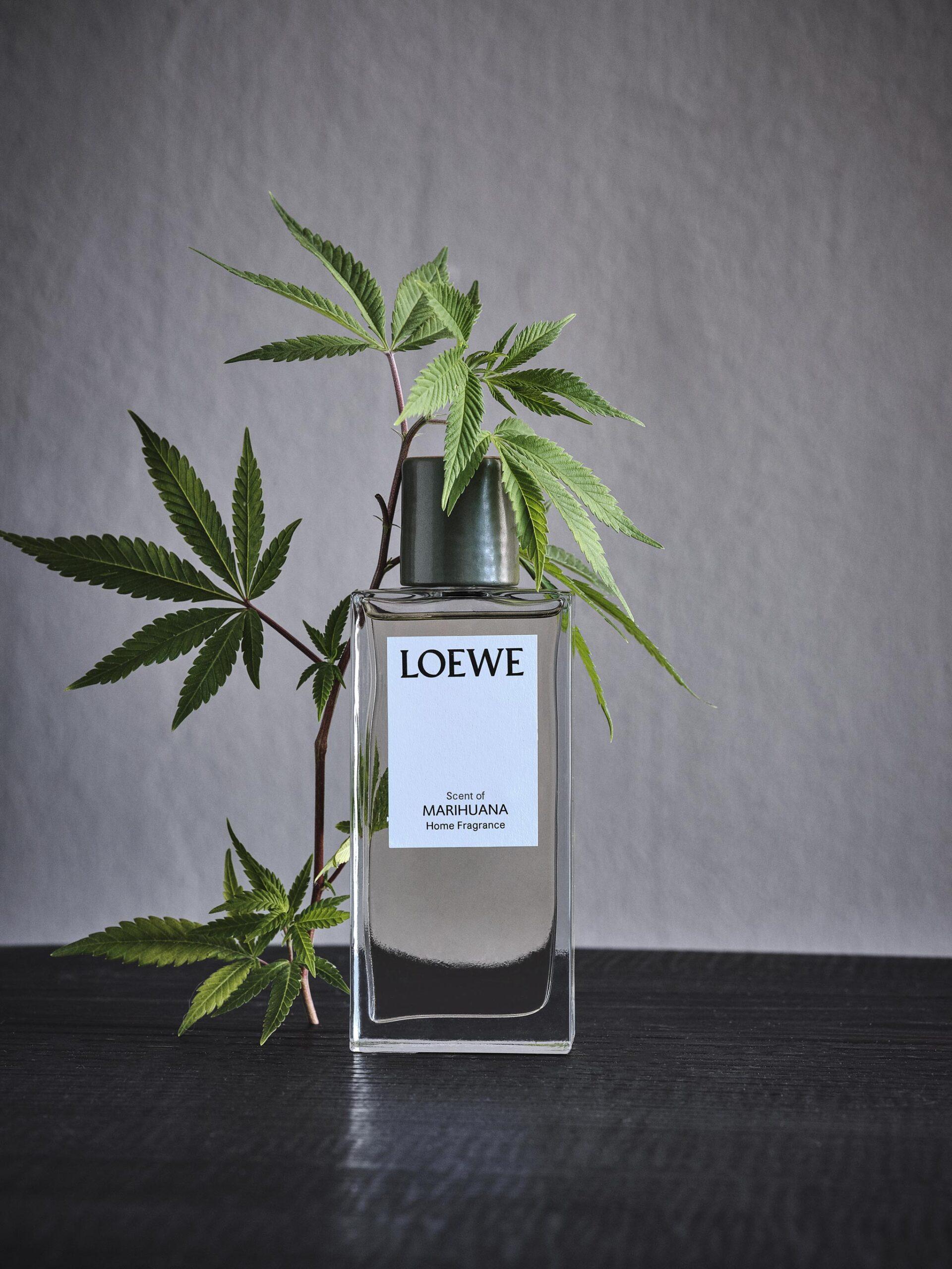LOEWE Home Scents Image
